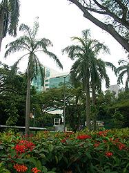 UnivSingapore